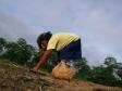 Foto - Terezinha plantando mandioca - Kees van Vliet - November 2008