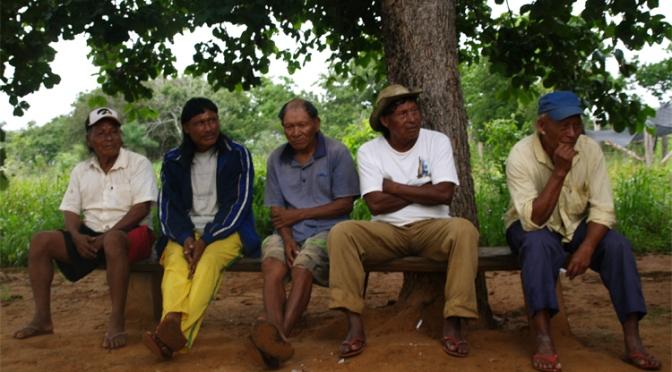 Samenvatting Evaluatie Project Mandioca 2011 – Door F. Leeuwenberg