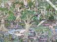 Illustratie van het merengebied Yahuarcaca door Elkin Castillo 2012