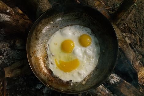 Vrolijk ontbijt in het bos - Foto Kees van Vliet - 2011