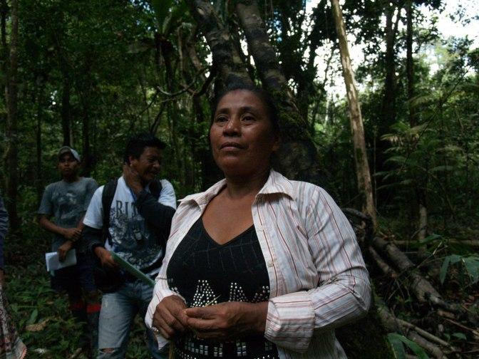 Bereikte resultaten Project Yahuarcaca