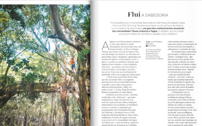 In het tijdschrift van Avianca